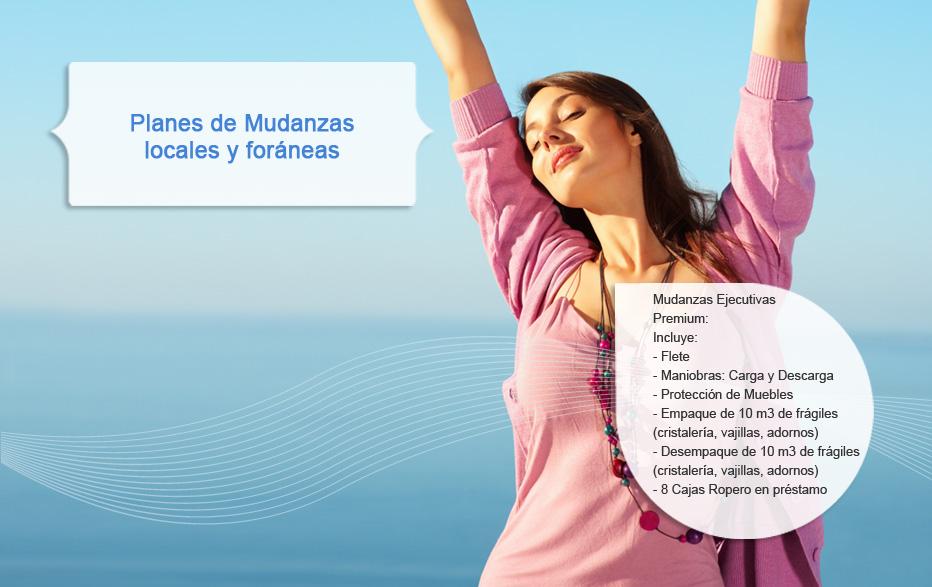 Mudanzas Ejecutivas Premium: