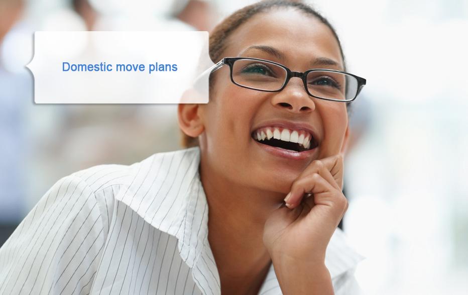 Domestic move plans